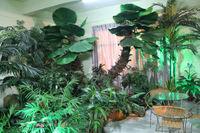 2014 hot sale artificial indoor palm tree