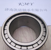 full complement cylindrical roller bearings sl182917