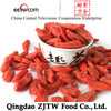 Best Quality Dried Fruit Import Goji Berries From China