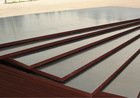 Film faced plywood Indonesia / High quality