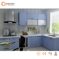 FOSHAN Candany PVC kitchen cabinets-blank pvc id card samples