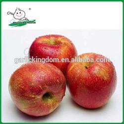 Qinguan Apples/Fresh Qinguan Apples/Delicious Qinguan Apples