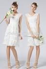 Ladies Elegant New Model Casual Short Dress