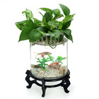 Beautiful aquaponics fish tank\aquarium fish tank