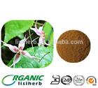 China wholesale Horny goat weed extract / Icariin /Epimedium extract free samples, raw materials