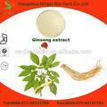 hierba natural extracto de raíz de ginseng americano extracto en polvo
