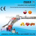 Las frutas y hortalizas de procesamiento líneas de lavado& máquina de clasificación