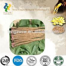 Organic natural fresh Burdock,Burdock Root,Burdock Root Extract 10%~40%