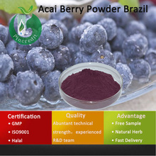 Acai Powder/Acai Berry Powder/Acai Berry Powder Brazil