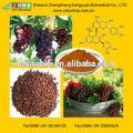 2014 nueva de la medicina de hierbas extracto de semilla de uva en polvo