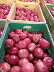 2014 sweet huaniu apple fruits hot selling