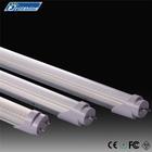 cheap t8 110v 220v led tube lighting,t8 led tube,LED lighting oval tube