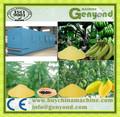 Plátano de la máquina de harina / plátano de procesamiento de la máquina