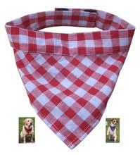 keep dog cool tie