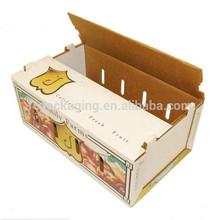 Customized Printing Apple Carton Box& Fruit Corrugated Packaging Boxes