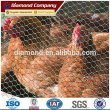 galvanized hexagonal wire mesh/hexagonal chicken wire mesh/anping hexagonal wire mesh factory