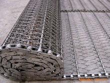 Roller chain driven belt