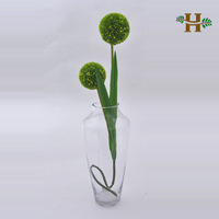 Clear decorative large glass jar, handblown practical single flower glassware for home decoration