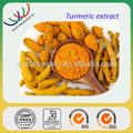 La muestra libre haccp gmp kosher certificado por la fda empresa amarillo en polvo extracto de cúrcuma curcumina 95%