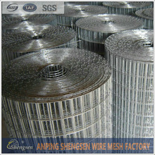 hot-dipped galvanized small bird cage wire mesh