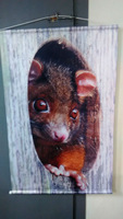 Decorative Animal Fabric Printing Wall Hanging Poster