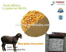 Animal Feed Raw Material - Lysine HCL 98.5%