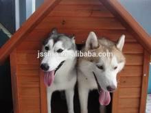 wpc dog house,wpc park fence/chair,grape trellis
