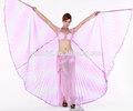 Как сделать костюм с крыльями своими руками 11