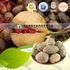 Chinese Herb Medicine Myristica fragrans