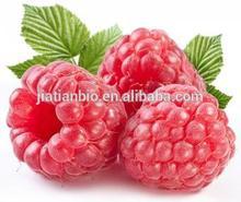 raspberry ketones 99%/raspberry seed extract/raspberry leaf extract