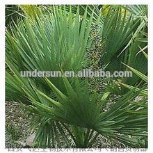 saw palmetto fruit extract/ fatty acid 25% 45%/palm kernel fatty acid