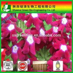 Wholesale Chamomile Extract 98% Apigenin Extract CAS No:520-36-5