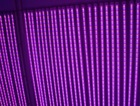 T5 and T8 LED Plant growth light for greenhouse 16W 2ft 4ft