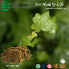 Ivy leaves herb extract powder forFunctional food additive & health supplement with High purity Hederacoside C