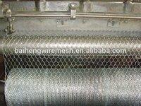 Anping manufacturer Hexagonal mesh for sale