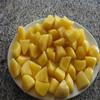 holland seed potato/holland potato seed with quality assurance