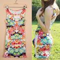 인쇄 섹시한 슬림 캐주얼 여성 드레스 2014 여름 새로운 패션 O- 목 참신 드레스의 꽃 꽃 탱크 g0478 민소매 드레스