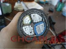 XLPE insulated power cable with rated voltage 1kV(Um=1.2kV) & 35kv(Um=40.5kV)