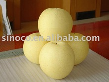 Fresh New Crop Crown Pear From China