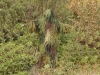 airsoft ghillie suits