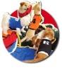 Sporty Dog Jerseys
