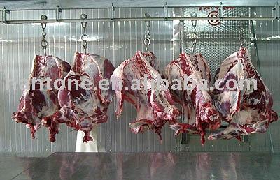 frozen beef meat halal