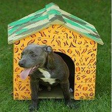 Personalised Dog Houses