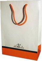 Exclusive handles bag