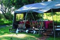 ELEPHANT PEPPER CAMP - MASAI MARA Tented Safaris