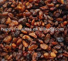 Brown Raisins sultana raisins red grape seedless raisin dried fruit snack fruit