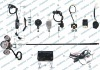 Wiring Assy/150cc MOPED Parts