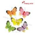 decorativos de la mariposa de plumas