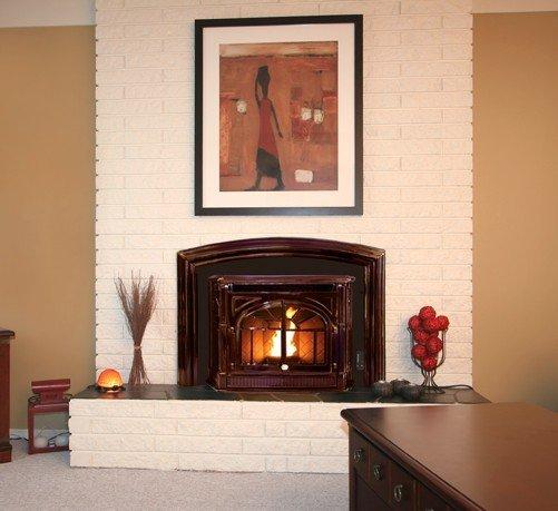 The Empress Fireplace Insert