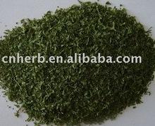 dried Parsley leaves/ powder/parsley spice